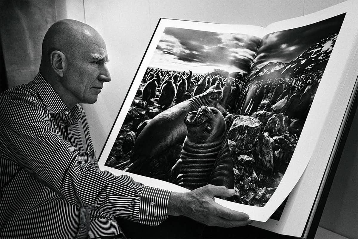 O livro Gênesis de Sebastião Salgado: Uma das mais belas obras brasileiras